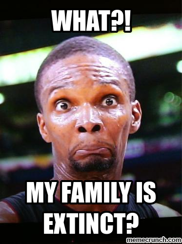 Chris bosh meme apr 19 20 08 utc 2012