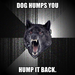 dog humps you
