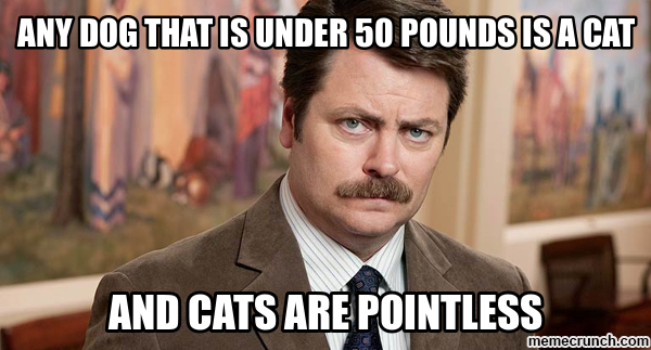 Any dog that is under 50 pounds is a cat Jun 13 02:05 UTC 2013
